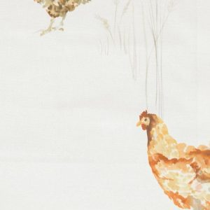 Country 1 Collection - Chook Chook Cream