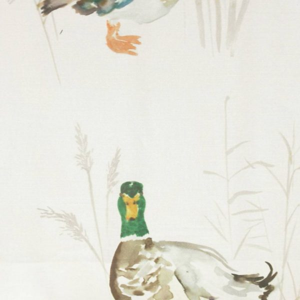 Country 1 Collection - Paddling Ducks Cream