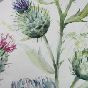 Country Florals Collection - Thistle Glen Sring Cream
