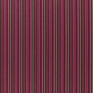 Boutique - Carnaby Stripe Brown Pink