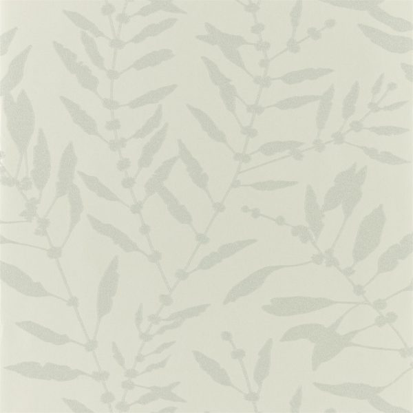 Anthozoa Wallpapers - Chaconia Shimmer Sand
