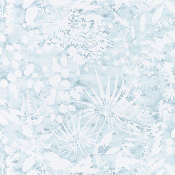 Anthozoa Wallpapers - Coralline Ocean