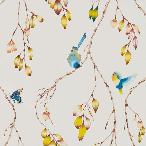Zapara Wallpaper - Iyanu Wallpaper Papaya/Kiwi