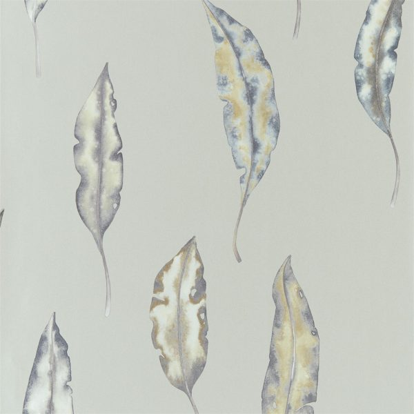 Anthozoa Wallpapers - Kinina Graphite/Mustard